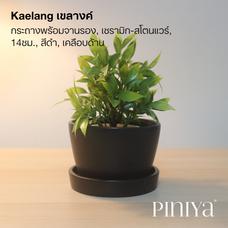 Piniya เขลางค์ กระถางต้นไม้พร้อมจานรอง, เซรามิก สโตนแวร์, 14ซม., สีดำ เคลือบด้าน