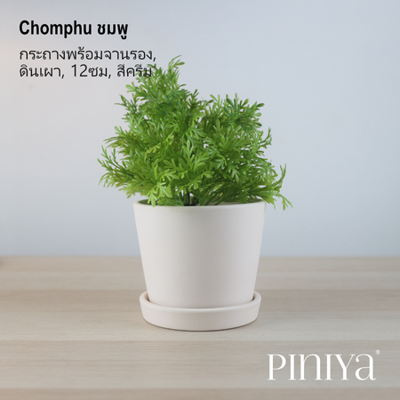 Piniya Chomphu ชมพู กระถางต้นไม้พร้อมจานรอง, ดินเผา, 12ซม., สีครีม