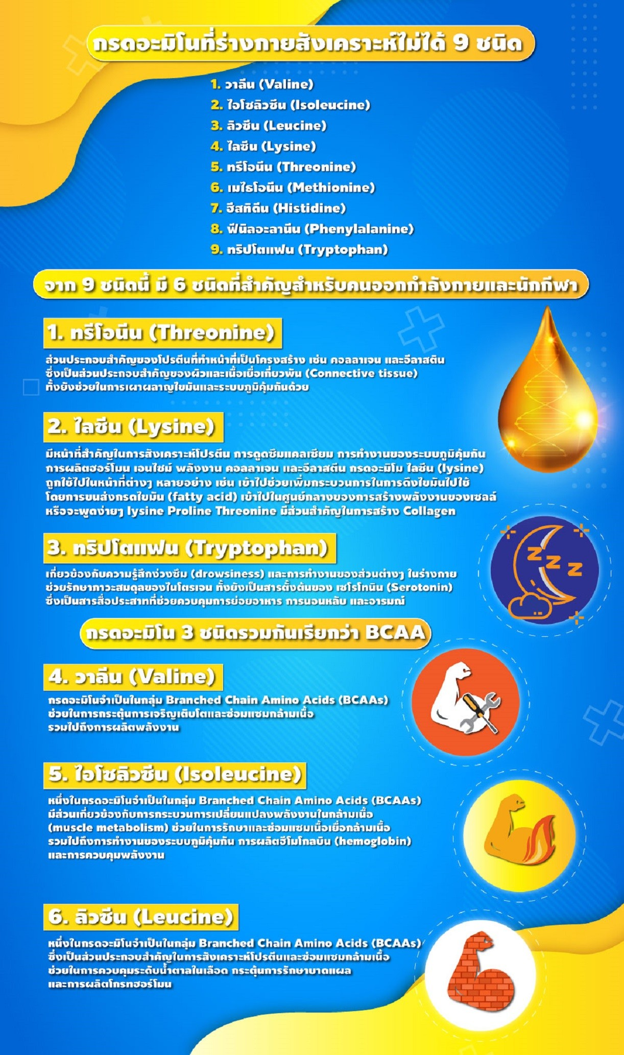 amino-content-bgc-2.jpg