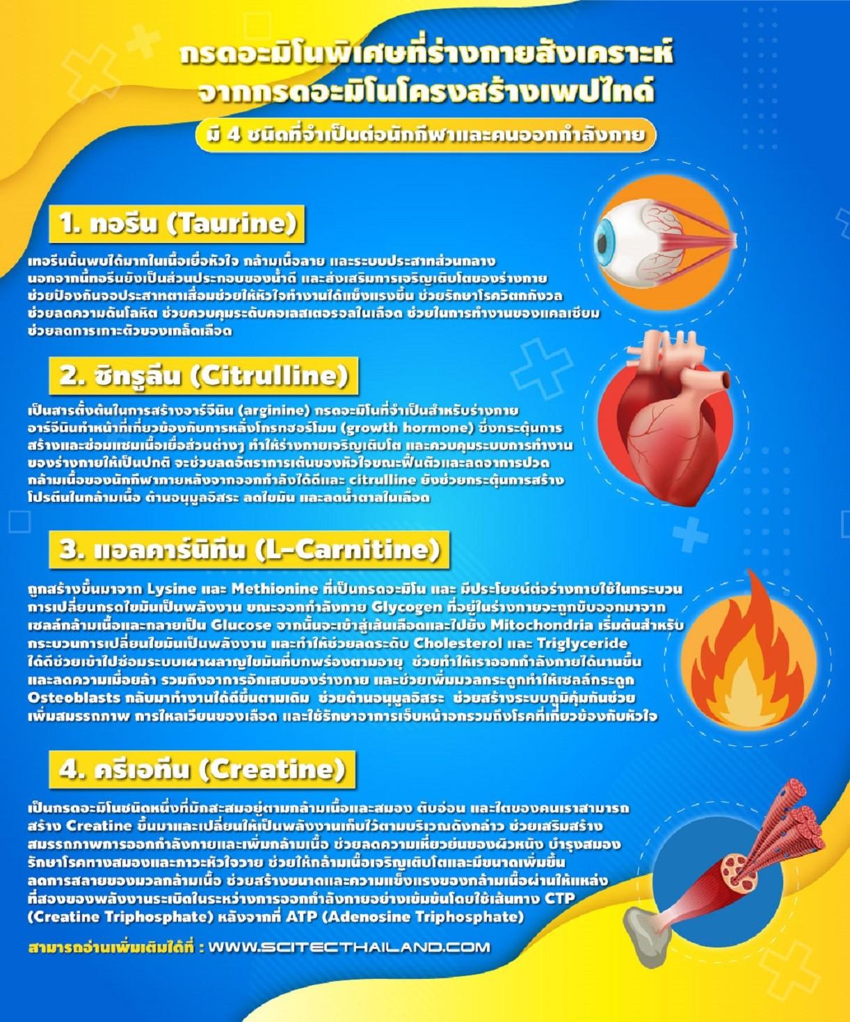 amino-content-bgc-3.jpg