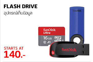 Flash Drive (2)