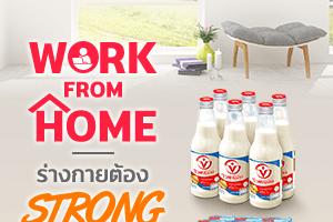 milk S1