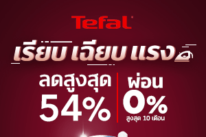 tefal iron s1