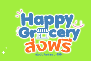 happy grocery b2